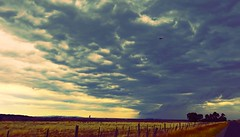It's raining in Melbourne City! (maginoz1) Tags: melbourne city clouds storm manipulate march 2017 autumn sky bulla metro victoria australia canon g3x skyscape landscape