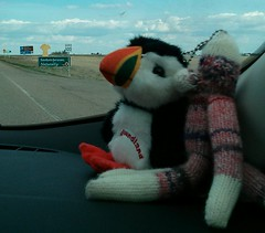 Saskatchewan (GarterGiggles) Tags: birthday travel puffin petunia maylongweekend flickrandroidapp:filter=none