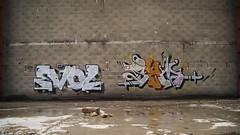 EvOL VS SEM @ZedOu (SeM #FeatherboY) Tags: street art wall graffiti photo paint tag spray peinture sem graff aerosol mur evol stree fresque