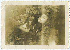 (Le merle tourdi) Tags: woman girl face leaves vintage us photo femme snapshot foliage bushes fille 1941 feuilles visage buissons etatunis feuillage