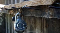 Locked and Forgotten (K-Jensen) Tags: field fence rust dof lock nail nails finepix locks fujifilm depth s4200
