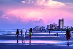 Beach Sunset (RAH71) Tags: ocean sunset summer sky beach june buildings walking hotel florida seagull atlantic highrise jacksonville redsky atlanticocean dogbeach atlanticbeach jacksonvilleflorida