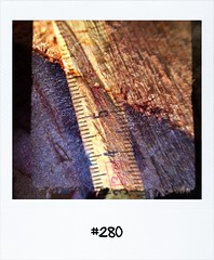 "#DailyPolaroid of 26-6-13 #280 • <a style=""font-size:0.8em;"" href=""http://www.flickr.com/photos/47939785@N05/9167116244/"" target=""_blank"">View on Flickr</a>"