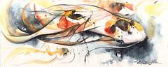 shanghai (Jennifer Kraska) Tags: fish art watercolor jennifer koi kraska jenniferkraska