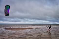 Brewster Flats ParaKite Water Skiing (PapaDunes) Tags: ocean beach capecod parasail waterskiing lowtide capecodbay brewsterflats brewsterma parakite parakitewaterskiing