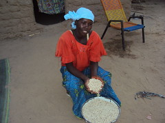 NIGER Nana Moumouni lives in Garan Mahaman and uses improved seeds that produce crops faster (Pic by Alima Mamadou)