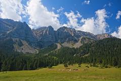El prat del Cadí (christian&alicia) Tags: mountain nature landscape catalonia catalunya muntanya pirineus catalogne cadí christianalicia