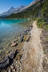 Bow Glacier Trail (WherezJeff) Tags: blue lake canada turquoise pebbles september trail alberta bow glacial improvementdistrictno9