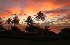 tropical sunrise (ranchodon) Tags: canon kauai mygearandme flickrstruereflection1 flickrstruereflection2 flickrstruereflection3 inspiringcreativeminds