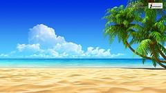 beach sand wallpaper