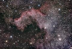 North America Nebula (David L Milligan) Tags: Astrometrydotnet:status=solved Astrometrydotnet:id=supernova11790