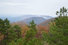 Talimena Drive: Fall (dsjeffries) Tags: mountains oklahoma fallcolors autumncolors vista ouachitanationalforest talimena ouachitamountains talimenadrive southeastoklahoma talimenanationalscenicbyway