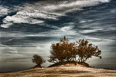 If you want water, do not go to desert (Wim Koopman) Tags: sky holland color netherlands dutch clouds sand nikon desert autum dune nederland dramatic duinen drunense loonse d5200