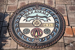 Manhole :: Wakayama (),  Japan (bgfotologue) Tags: station japan cat jp tama   wakayama       tamacat