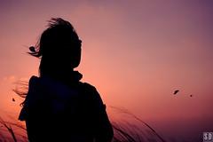SDF_0968 (SendoFu) Tags: 九天 森林 大度山 大肚山 草原 主題式 外拍 bonnet ボンネット エプロン風スカート blouse bl ブラウス headbow kc カチューシャ bnt 蕾絲 維多利亞 jsk op onepiecedress ワンピース jumperskirt ジャンパースカート nop lolita lolitafashion 蘿莉塔 蘿莉塔時裝 ロリータ・ファッション sweetlolita classicallolita