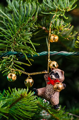 Hanging Around (HikerDude24) Tags: christmas winter tree bells 50mm nikon holidays december ornament raccoon needles conifer d5100