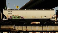 LYES (BLACK VOMIT) Tags: car train graffiti ol south grain dirty mc dos hopper freight wh lyes grainer