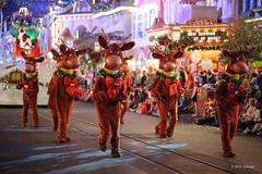 Merry Christmas (ddindy) Tags: christmas orlando florida disney disneyworld waltdisneyworld magickingdom mickeysverymerrychristmasparty pixelmania