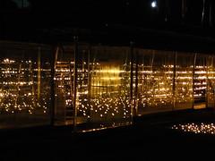 Oil Lamps at Ruwanwelisaya - Anuradapura (Janesha B) Tags: heritage culture buddhism civilization srilanka stupas dagobas anuradapura