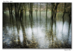 winter 2 italy panorama 6 lake 3 alberi landscape lago 1... (Photo: Andrea di Florio (9.000.000 views!!!) on Flickr)