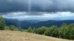 Uitzicht in de Karpaten