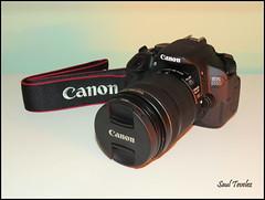 Canon EOS 650D (Saul Tevelez) Tags: camera canon lens israel photos fotos lente camara arad canoneos650d efs18135mm canonpowershotsx50hs saultevelez
