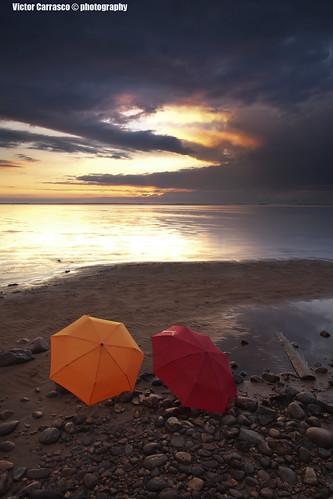 Myrskyn jälkeen/ After the storm