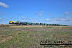RENFE - 319.212 (MarcArtigues) Tags: electric train de tren general diesel motors zaragoza locomotive carbon coal locomotora samper renfe 319 calanda aragn macosa adif elctrica mercancas