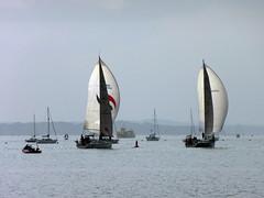 billowing sails 150/365 (auroradawn61) Tags: uk sea england boats coast sailing sails may dorset yachts southcoast poole 365days poolebay 365daysproject billowingsails lumixtz25 365daysin2014