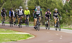 Peleton (Denys Multimedia) Tags: birds cycling cyclists places perth swanriver activities applecrossforeshore