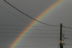 Through the wires (ohange2008) Tags: rainbow telephonewires wires electric