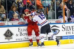 "Missouri Mavericks vs. Allen Americans, March 3, 2017, Silverstein Eye Centers Arena, Independence, Missouri.  Photo: John Howe / Howe Creative Photography • <a style=""font-size:0.8em;"" href=""http://www.flickr.com/photos/134016632@N02/33117917762/"" target=""_blank"">View on Flickr</a>"