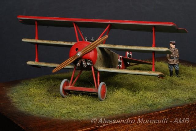 Fokker DR.I (21)
