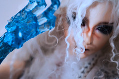 Give Me Shelter (TerraNoir7) Tags: ice ball doll ns lord bjd resin transparent fairyland abjd joint ital feeple65