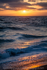 Edge of the Sea (Images by April) Tags: california sunset beach canon pacificocean 5d markii colorfulsunset californiasunset