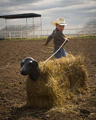 Steer Roping (Sam Stukel) Tags: rodeo lariat roper roping lasso littlecowboy kidsrodeo