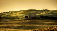 Saline di Volterra (PI) - tramonto (leon.calmo) Tags: canon tramonto toscana colline grano eos50d salinedivolterra bestcapturesaoi leoncalmo