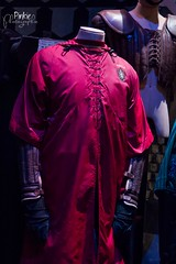Robe de Quidditch / Quidditch Uniforms (Pinkie Photograhie) Tags: harrypotter themakingofharrypotter warnerbrosstudiotourthemakingofharrypotter