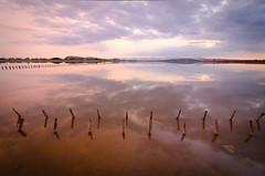 A volte le saline ti chiedono di essere fotografate.... (Isabella Pirastu) Tags: sardegna sea italy beach italia mare sardinia cagliari