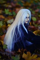 1DSC_0140 (Vlastelin Nichego) Tags: dolls bjd abjd chen dz karven dollzone