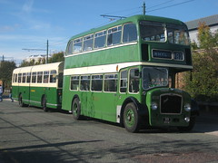 Picture 166 (toni's pics - (2)) Tags: show old bus buses museum bristol transport group tram 531 451 routemaster re preservation 201 leyland wirral cuv wlt fhf b926 glv lodekka atlantean 2013 180c kwm hhy 319pfm ufm52f 201bus a323 186d
