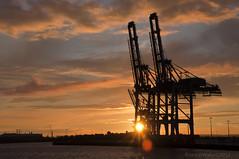 DSC_6593 (Rhannel Alaba) Tags: nikon ship crane terminal container le havre shore sts d90 pido alaba rhannel gonfrevillefrance