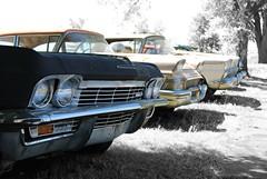 vintage Detroit iron (David Sebben) Tags: ford chevrolet abandoned vintage ir iron detroit iowa colorized studebaker junkyard selective