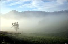 Lever du soleil depuis Cominac, Ariège, Midi-Pyrénées (lyli12) Tags: nature automne soleil nikon paysage brume ariège d7000