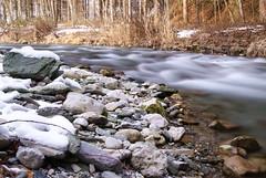 Gsseringbach (Frejo0804) Tags: schnee winter water grey wasser natur fliesen floating grau bach braun kalt wald klte stativ frbung rauhreif naturaufnahme focucpocus