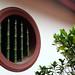 Green-glaze ceramic bamboo mullions in circular aperture in courtyard wall at Hong San See