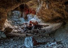 Urbex Cave Pig (darkday.) Tags: urban abandoned beer rock underground pig risk australian roots australia brisbane urbanexploration infiltration qld queensland cave aussie milf hacking ue urbex queenslander abando