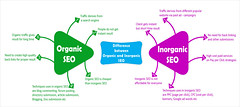 organic-seo(1) (Reema mathur) Tags: indian social website networking infograph