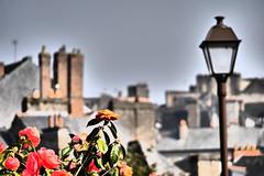 Camélias à Fougères (edno81) Tags: france fleur village bretagne brique lampadaire fougères toits 2014 camélia cheminées
