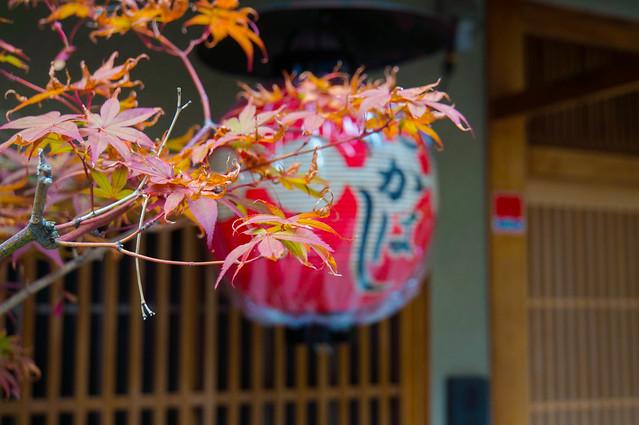 Kyoto-04771.jpg
